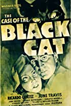 The Case of the Black Cat