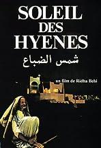 The Hyena's Sun