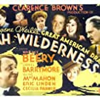 Lionel Barrymore, Wallace Beery, Mickey Rooney, Spring Byington, Helen Flint, Eric Linden, Aline MacMahon, and Cecilia Parker in Ah, Wilderness! (1935)