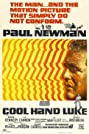 Cool Hand Luke (1967) Poster
