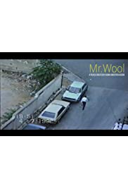 Mr.Wool
