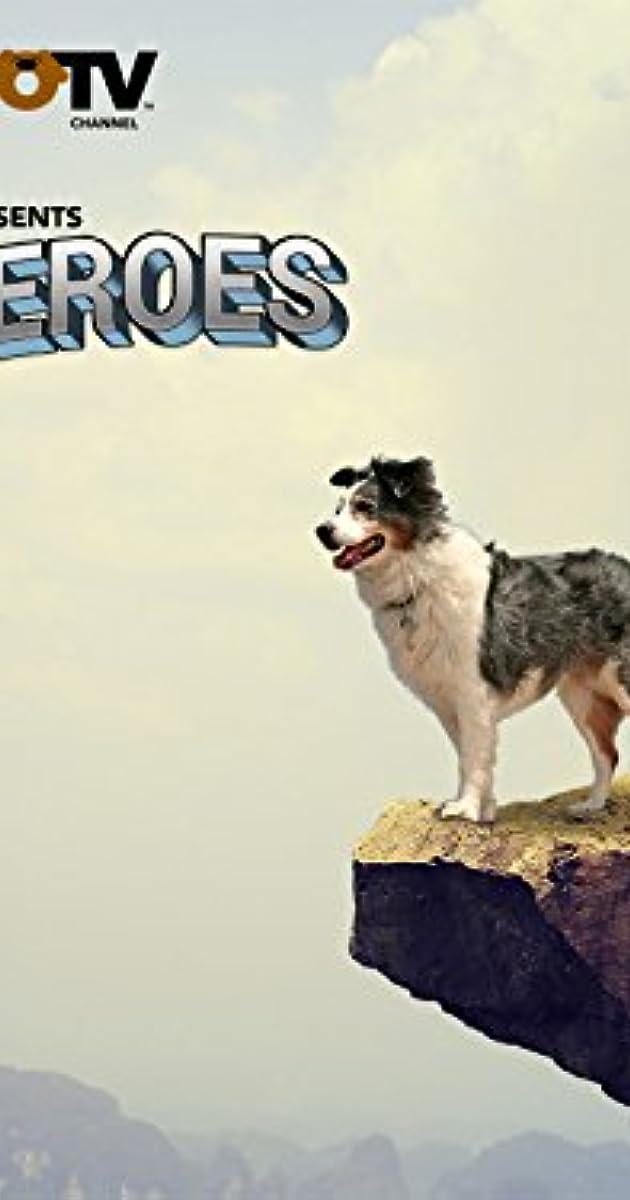 Pet Heroes (TV Series 2010–2012) - IMDb