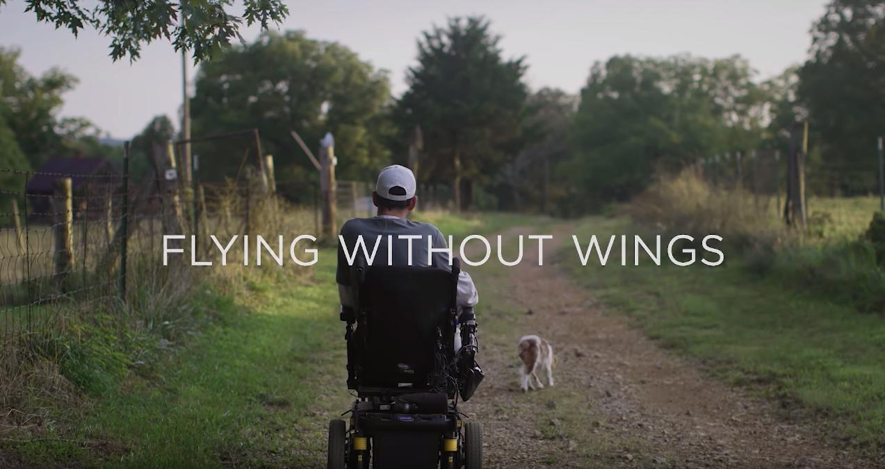 Fly Without Wings (2018)