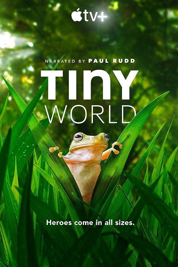 Tiny World – Season 2