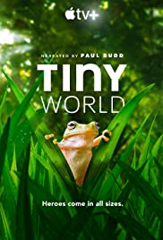 Tiny World Poster