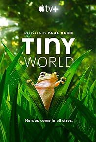 Primary photo for Tiny World