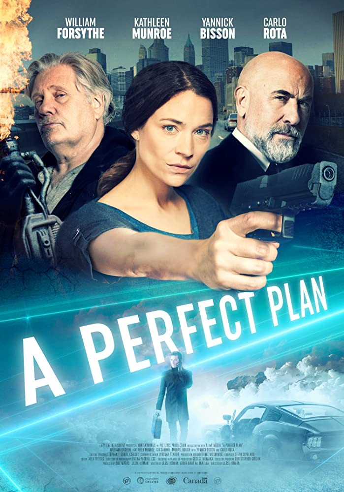 A Perfect Plan 2020 English 720p HDRip 800MB