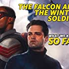 """""""The Falcon and the Winter Soldier"""" (2020)"""