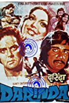 Darinda (1977) Poster