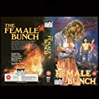The Female Bunch (1971)