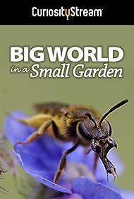 Big World in a Small Garden (2016)