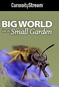 Big World in a Small Garden