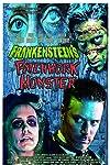 Frankenstein's Patchwork Monster (2015)
