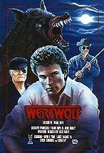 Primary image for Werewolf
