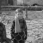 Mandy Miller in Mandy (1952)