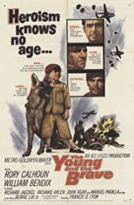 Japanese free movie downloads The Young and the Brave [mpg]