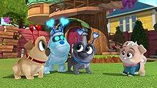 Puppy Dog Pals Season 2 Imdb