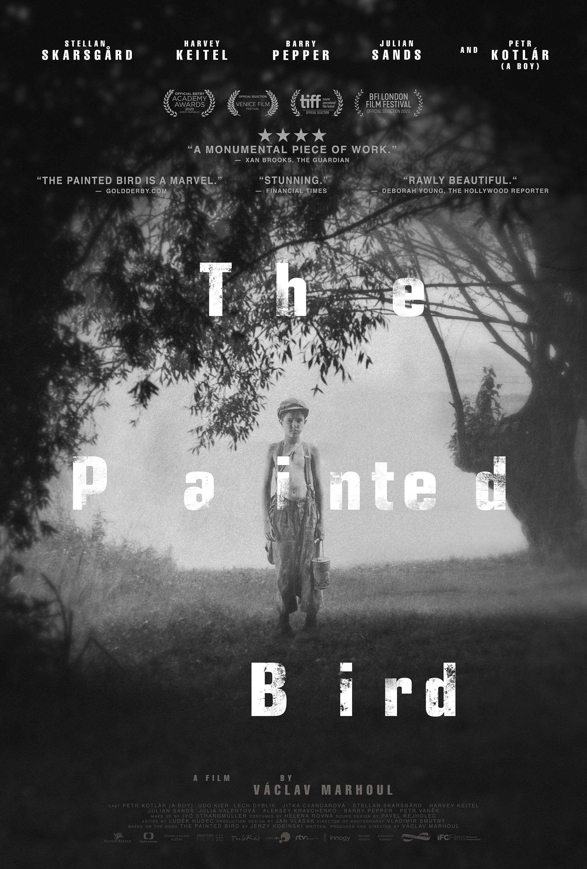 Boyalı Kuş izle