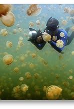Palau: Return to Paradise