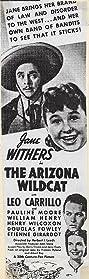 The Arizona Wildcat (1939) Poster
