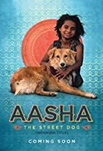 Aasha The Street Dog