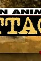 Primary image for When Animals Attack 3