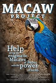 Amazónia Papagájai Poster