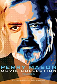 Primary photo for Perry Mason: The Case of the Avenging Ace