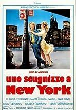 Uno scugnizzo a New York
