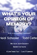 What's Your Opinion of Memory?