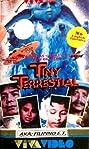 Little Boy Blue: Tiny Terrestrial (1991) Poster