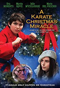 Primary photo for A Karate Christmas Miracle