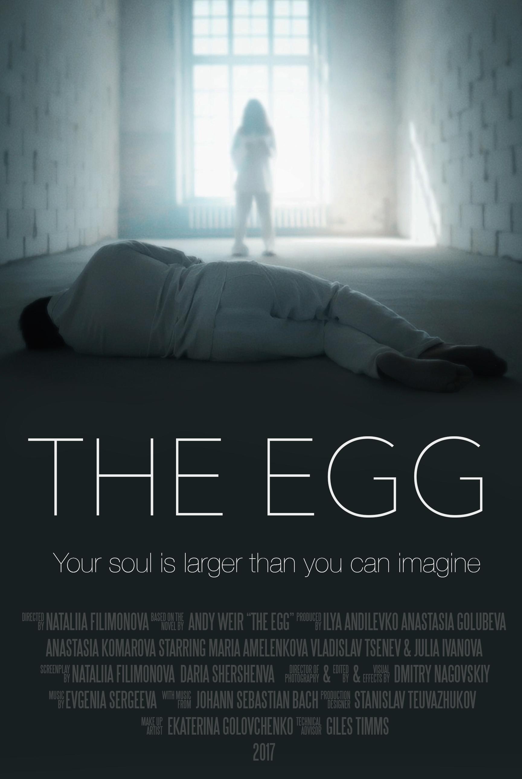 Egg the summary weir andy The Egg,