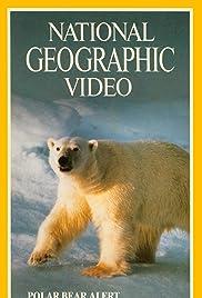 Polar Bear Alert Poster