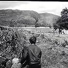 Hunted (1952)