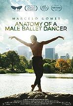 Anatomy of a Male Ballet Dancer
