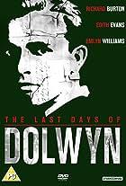Woman of Dolwyn