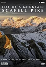 Life of a Mountain: A Year on Scafell Pike