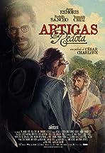 The Story of Artigas