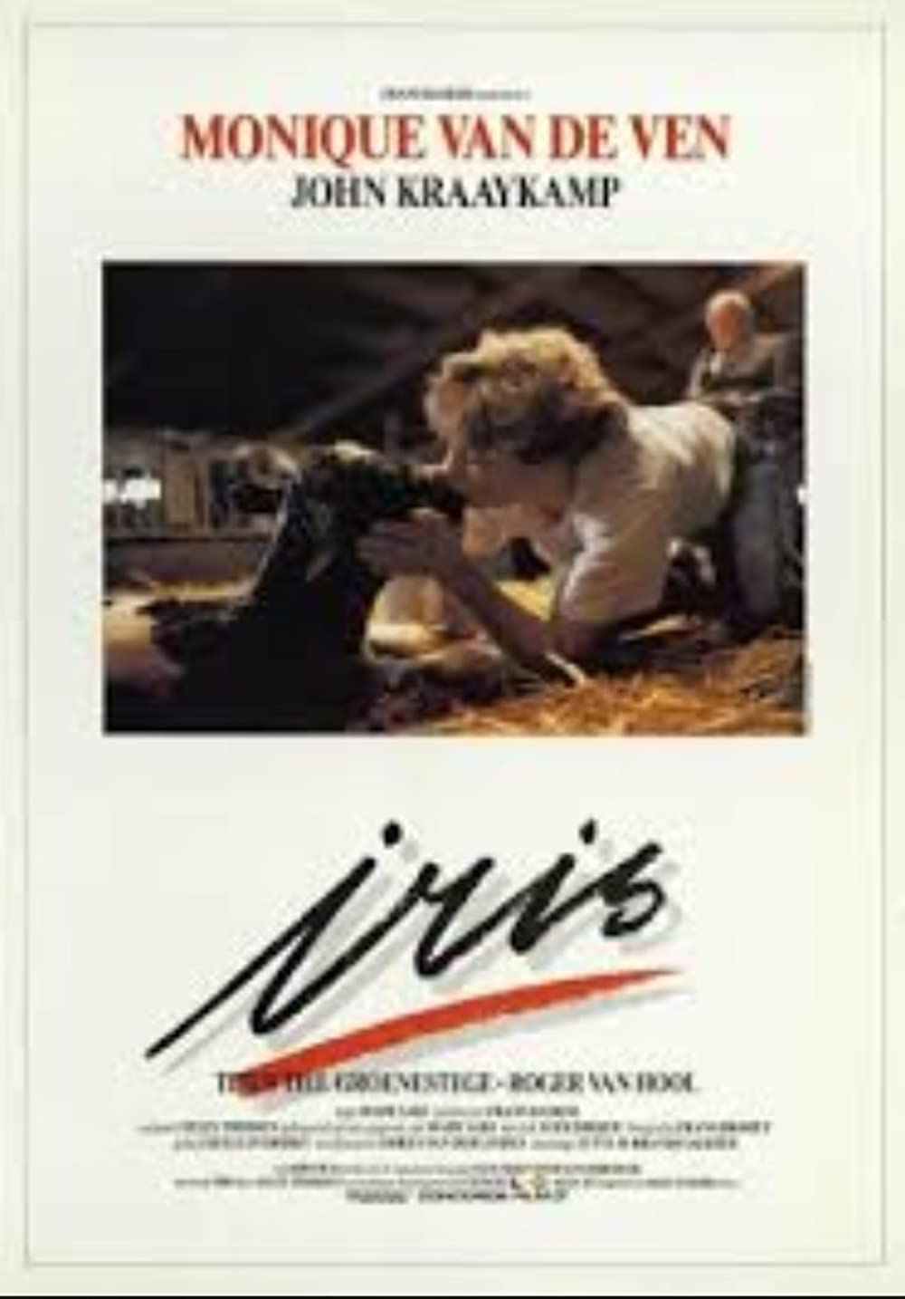 Iris 1987 Hindi Dual Audio 720p UNCUT DVDRip 1.1GB Download