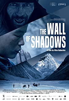 The Wall of Shadows (2020)