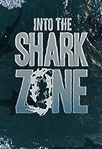 Into the Shark Zone