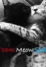 Team MeowSA