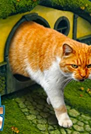 LOTR Litter Box & Cat Scratching Post (Lord of the Rings) Poster
