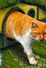 Primary photo for LOTR Litter Box & Cat Scratching Post (Lord of the Rings)
