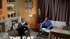 The Cat with Ten Lives
