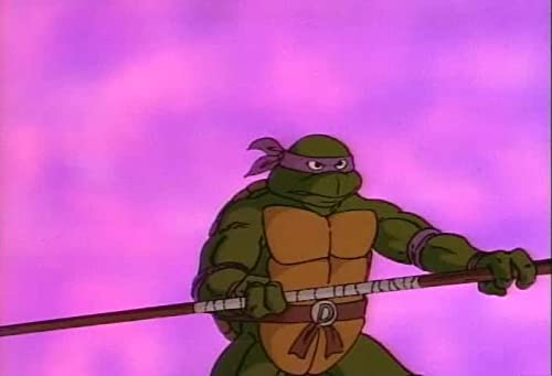 Teenage Mutant Ninja Turtles: Season 5