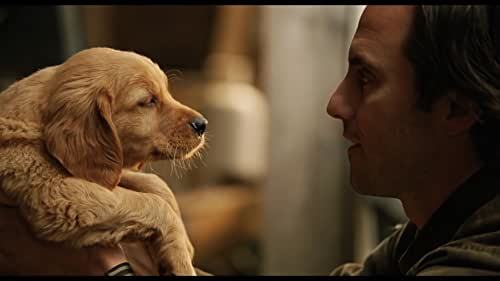 Based on the best-selling novel by Garth Stein, 'The Art of Racing in the Rain' features the voice of Kevin Costner as the dog of a racecar driver.