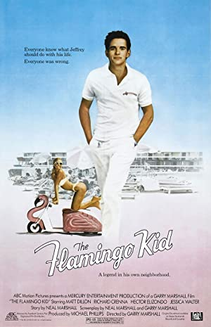 The Flamingo Kid Poster Image