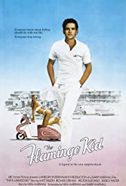 The Flamingo Kid Poster